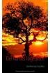 Buch Leseprobe Der Ruf des Hagedasch Melissa Rohlfs